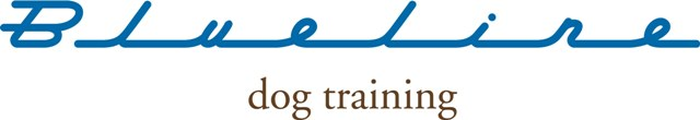 Blue Line Dog Training Chicago